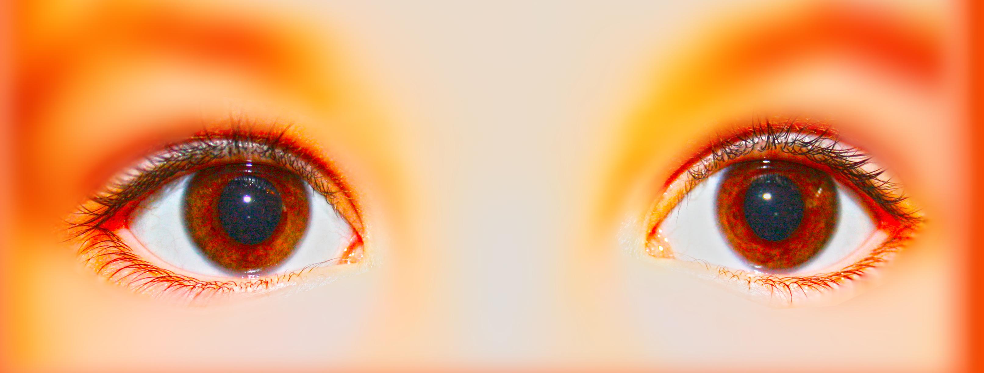 Need some Fresh Eyes?
